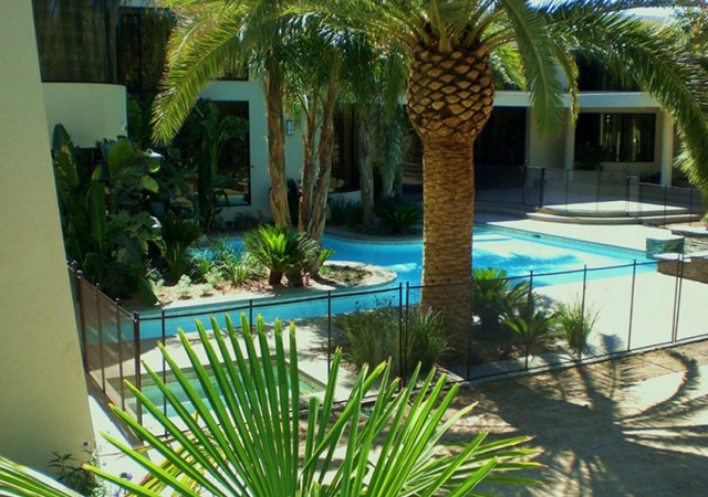 25000 gallon luxury pool and custom landscaping