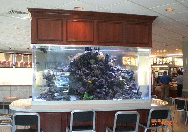 custom fish tank - fast food commercial construction for McDonalds restaurant